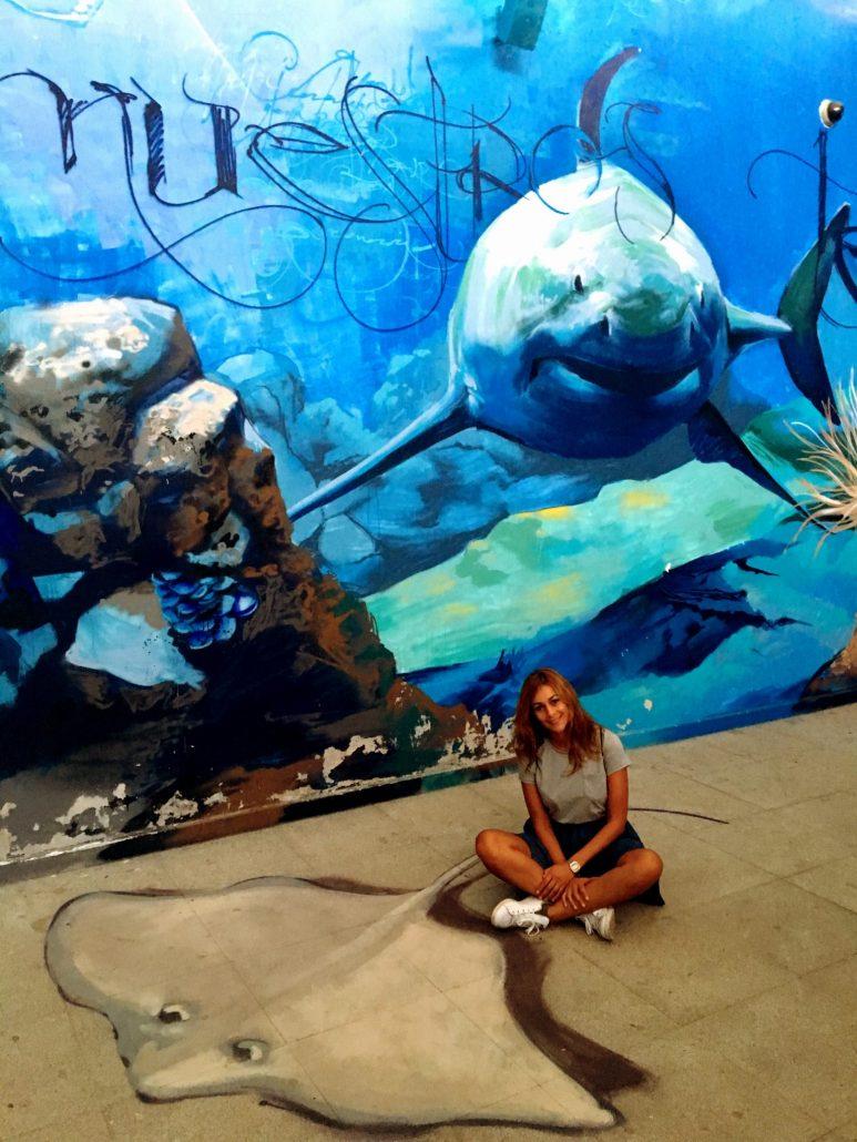 Parte del grafiti marino de unos 200 metros cuadrados pintado por El Niño de las Pinturas